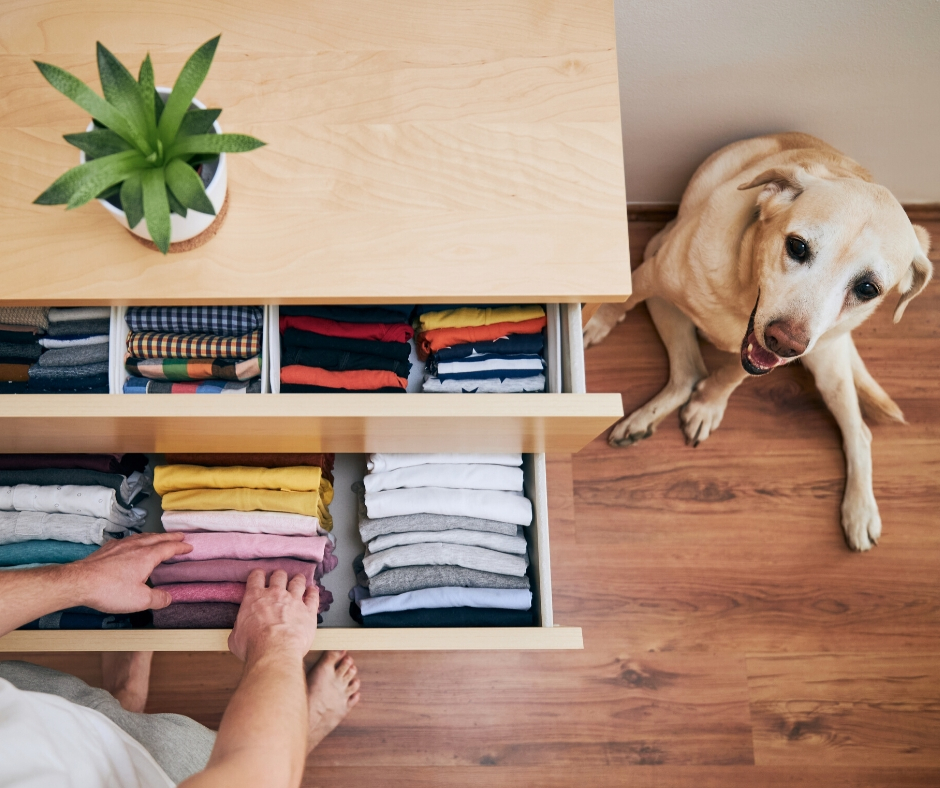 Stop Being Messy and Get Organized in 6 Easy Steps