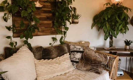 15 Best Indoor Hanging Plants To Decorate Your Home