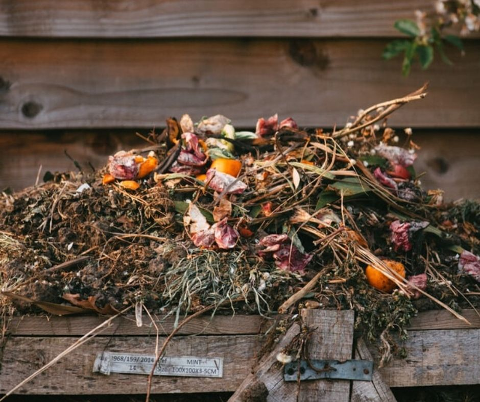 ultimate guide to backyard composting