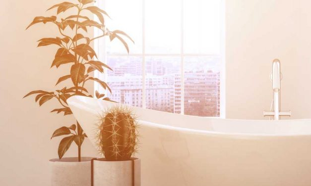 8 Ways to Decorate Your Bathroom For That Spa-Like Experience