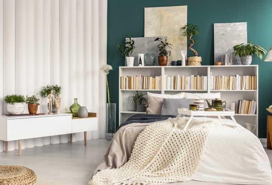 15 Best Bedroom Plants For Better Sleep Quality