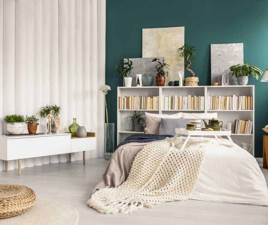 15 best bedroom plants for better sleep quality  scoop of